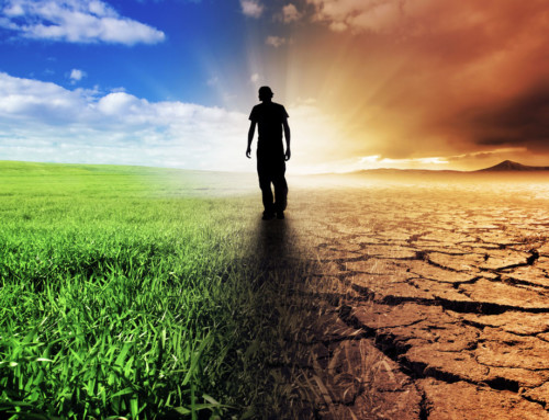Climate Change and Grief – A Dual Process Approach
