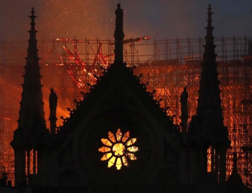"""The entire wooden interior of Notre Dame Cathedral has been lost"" — CNN Online 15 April 2019"